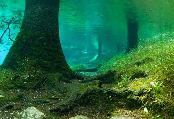 Парк двух стихий -Зеленое озеро в Австрии