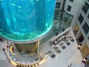 лифт-аквариум в отеле Берлина