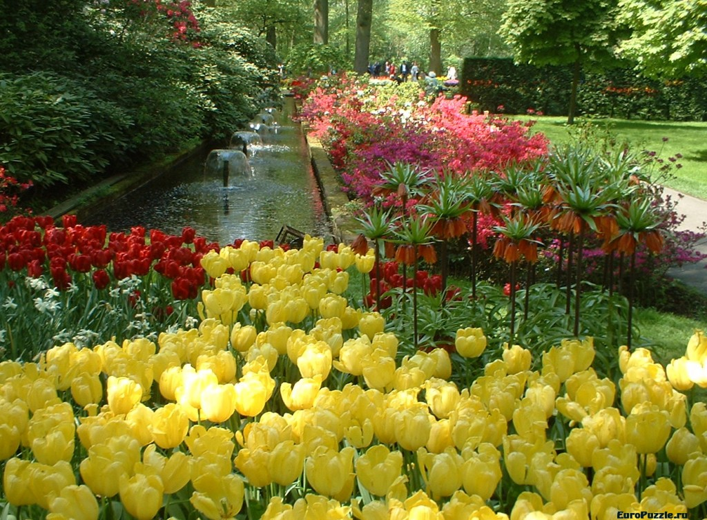Нидерланды весной