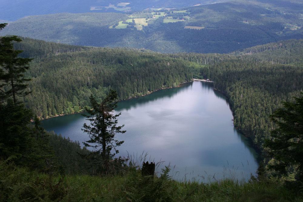 Самый большой лес Европы