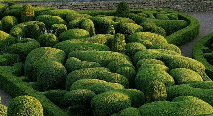 Великолепный парк Marqueyssac во Франции