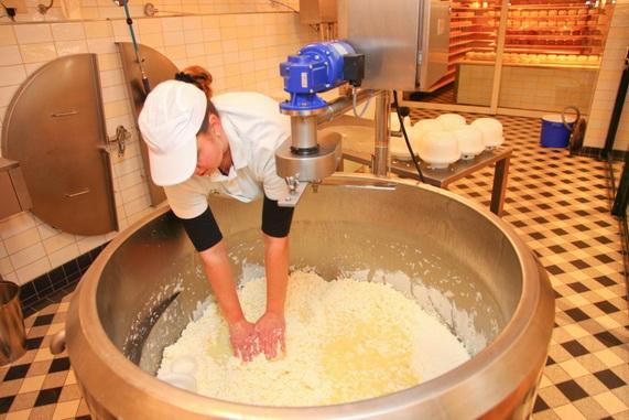 Сырная фабрика в Волендаме Нидерланды
