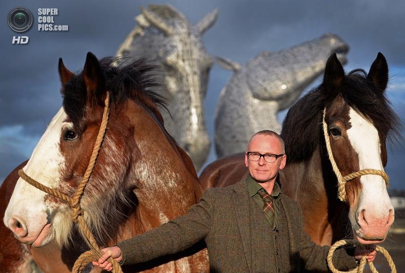Келпи - мифические лошади Энди Скотта